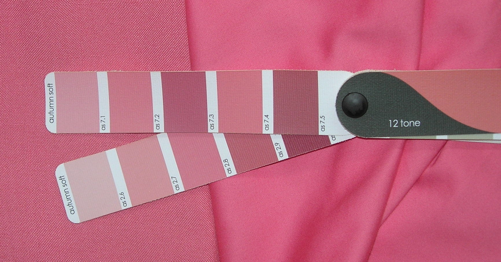 An easy way for you to check the intensity of the colour is by using your 12-Tone colour palette as a guide. To do this place your \u0027fan\u0027 over the colour in ... & Hints and Tips for Using Your 12-Tone Colour Palette: 1/ Low Chroma ...