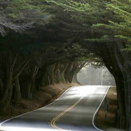 winding road 5