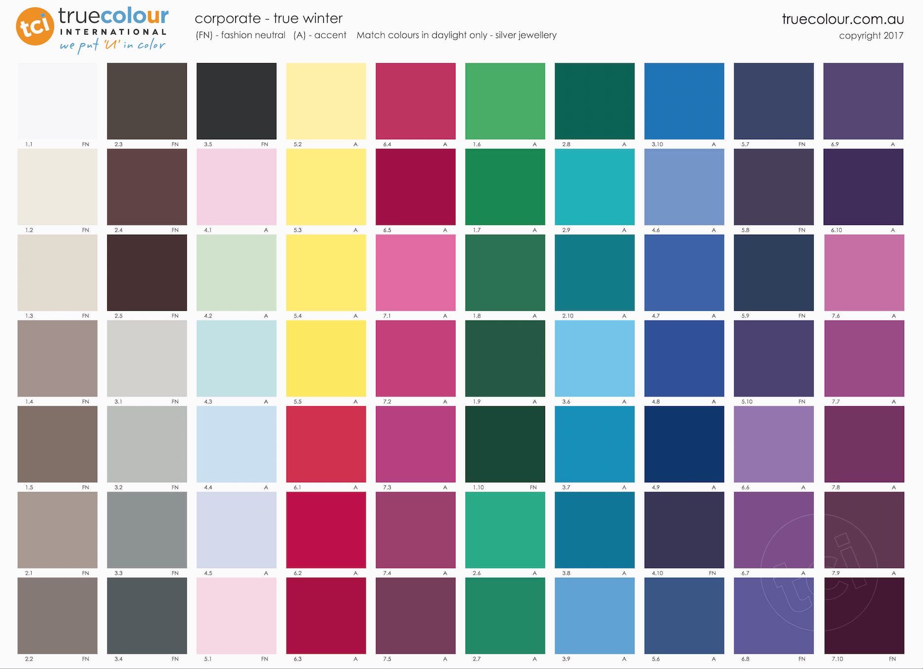 True Winter Poster - Corporate - True Colour International